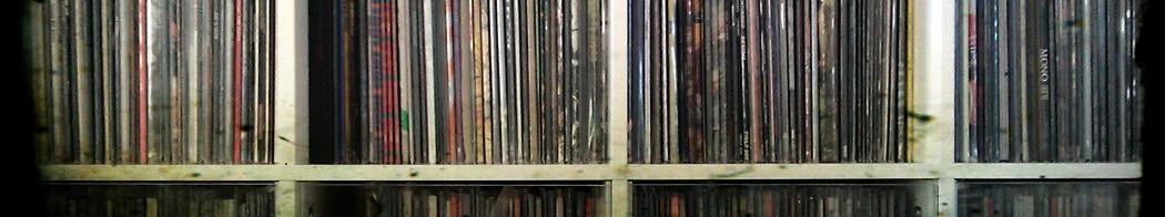 vinyl diaries