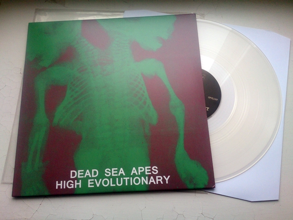 deadseaapes02